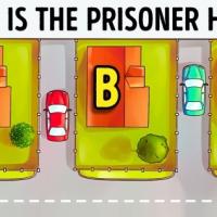 Логическа задача: В коя къща се укрива затворникът?